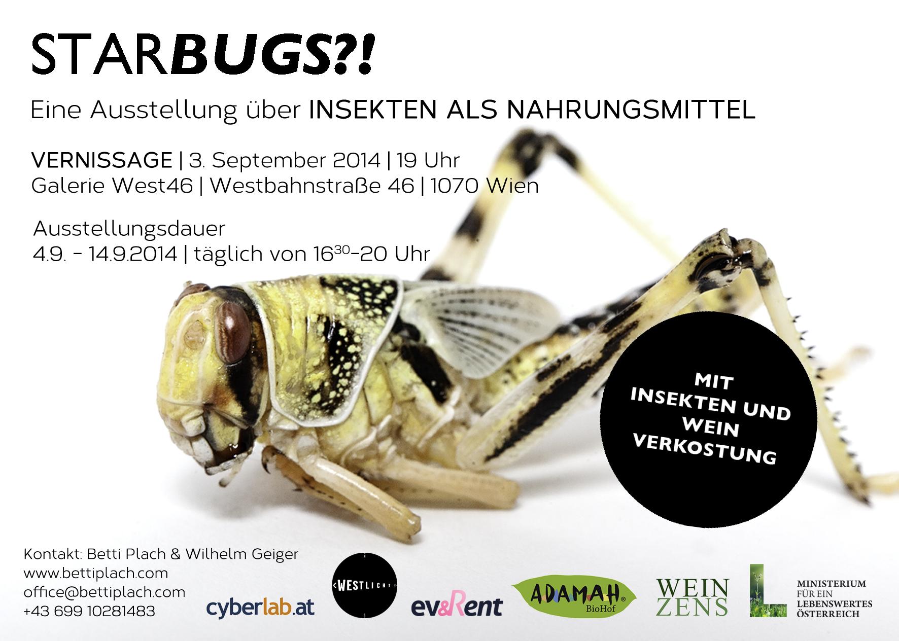Starbugs?! Eine Ausstellung über Insekten als Nahrungsmittel.