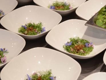 Insekten Dinner I & II mit Harald Irka im Futurefoodstudio.