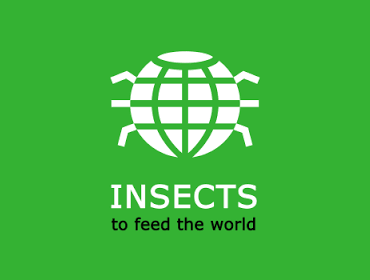 "FAO Konferenz ""Insects to Feed the World"""